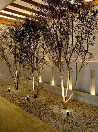 iluminacao-jardim-4